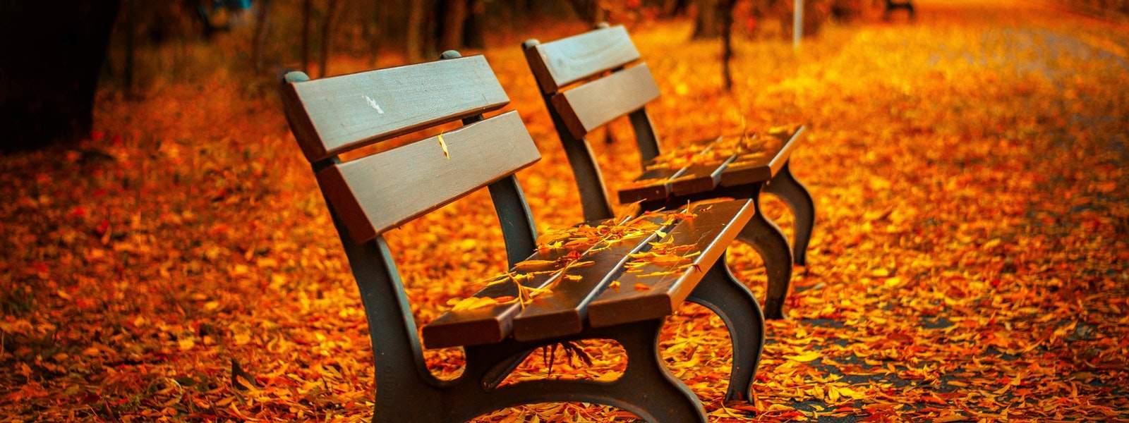 10 причин порадоваться наступлению осени
