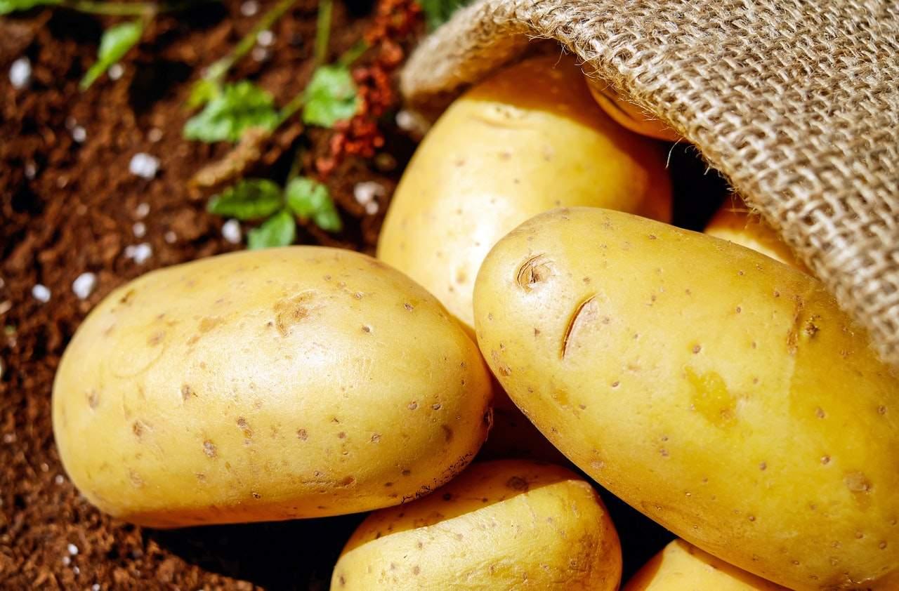 Как избавиться от нитратов в овощах и фруктах